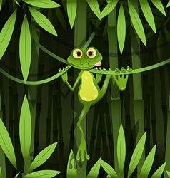 frog in a jungle vector image