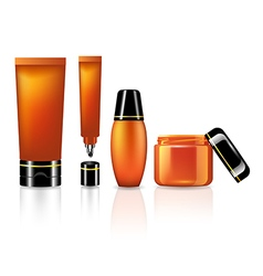 Product set for skin care of orange collection vector image
