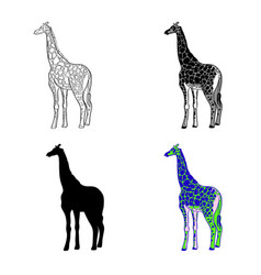 an image of a giraffe vector image