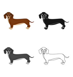 Dachshund single icon in cartoon styledachshund vector