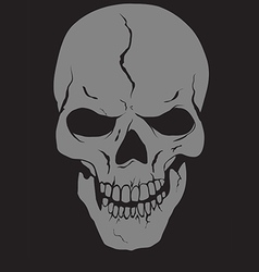 Skull with layers vector