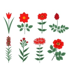 Red flowers set vector