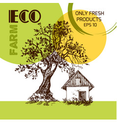 Eco farm vector