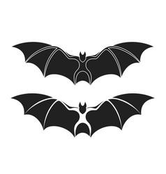 fruit bat vector image