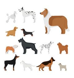 funny cartoon dog character bread in cartoon style vector image
