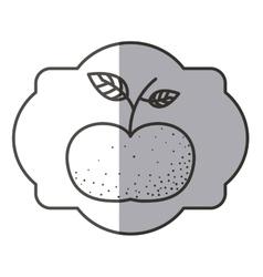 Isolated tangerine fruit design vector