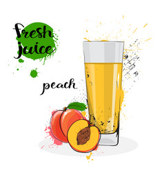 Peach juice fresh hand drawn watercolor fruit and vector