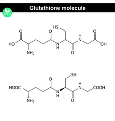 Glutathione chemical structure vector