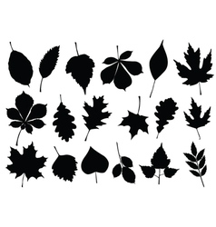 Autumn leaf silhouettes vector