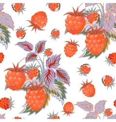 Seamless pattern with orange raspberries in vector image