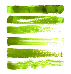 set of green brush strokes vector image