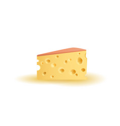 triangular piece of cheese vector image