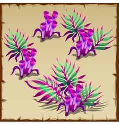 Tubular purple and green marine seaweed vector