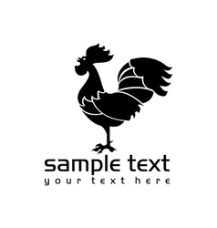 black isolated rooster vector image