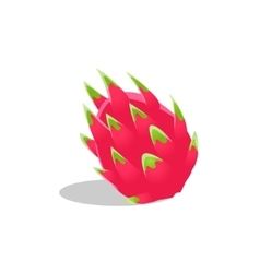 Dragon fruit whole bright icon vector