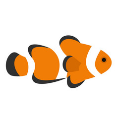 Fish clown icon isolated vector