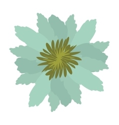 Green petals of flower with sepal vector