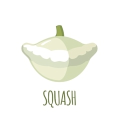 Squash icon in flat style on white background vector