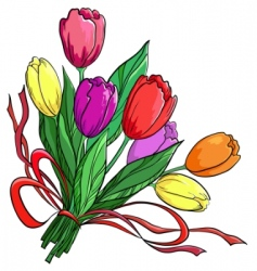 Flower tulips bouquet vector