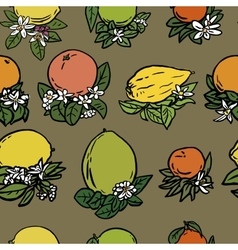 Various tropical citrus fruits vector