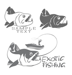 Exotic fish vector