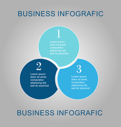 business diagram circle vector image vector image