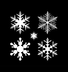 set of snowflake in modern style vector image