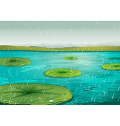 Rain on the pond vector image