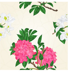 Seamless texture flowers pink and white vector