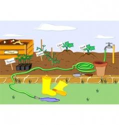 starter garden vector image