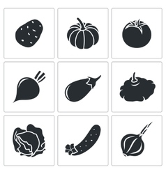 Vegetables set of nine icons vector