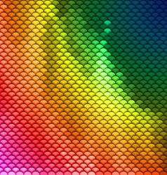 Colorful scales pattern vector