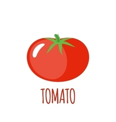 Tomato icon in flat style on white background vector