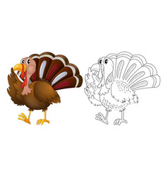 animal outline for wild turkey vector image vector image