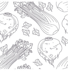 hand drawn seamless pattern with celery vector image