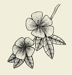 Hand drawn sketch flower vector