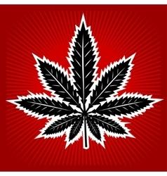 Cannabis - marijuana leaf on sunny background for vector