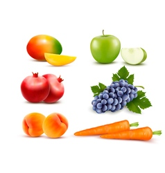 Big group of different fruit and vegetables vector image vector image