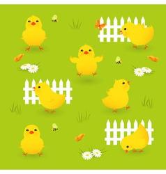 Cute chickens vector