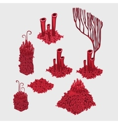 Variety of red corals big sea set vector
