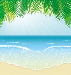 Beach sea waves and palm leaves vector