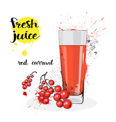 Red currant juice fresh hand drawn watercolor vector