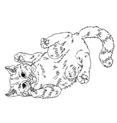 Sketch of playful cats sleeping vector