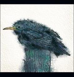 Small blackbird vector