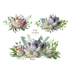 Succulent cactus plant watercolor hand drawn set vector