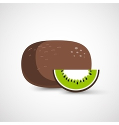 Vecor whole kiwi fruit and his sliced segment vector