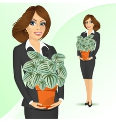 Business woman holding peperomia marmorata plant vector