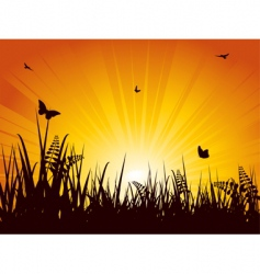 summer meadow sunset vector image