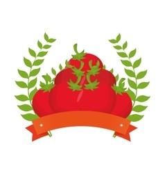fresh tomato farm product vector image vector image