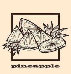 hand drawn pineapples vector image vector image